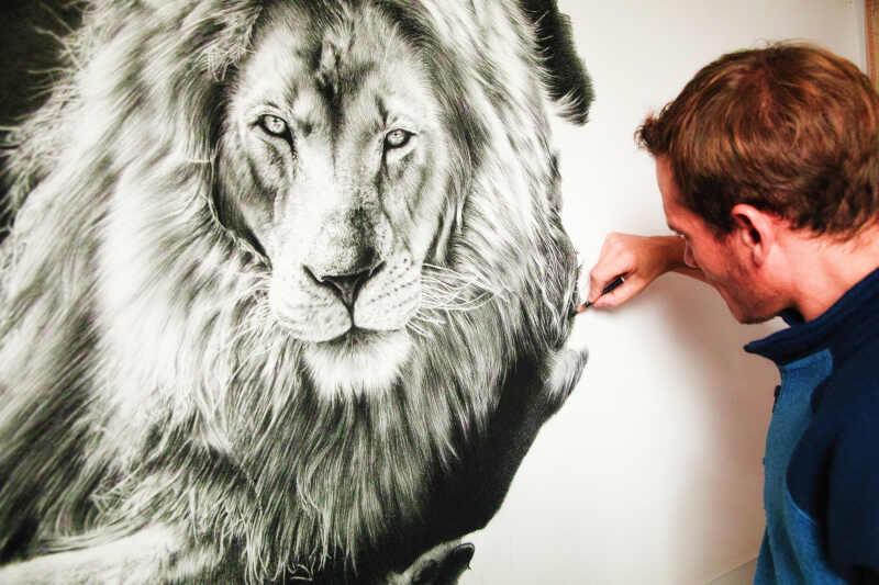 come conquistare una donna leone